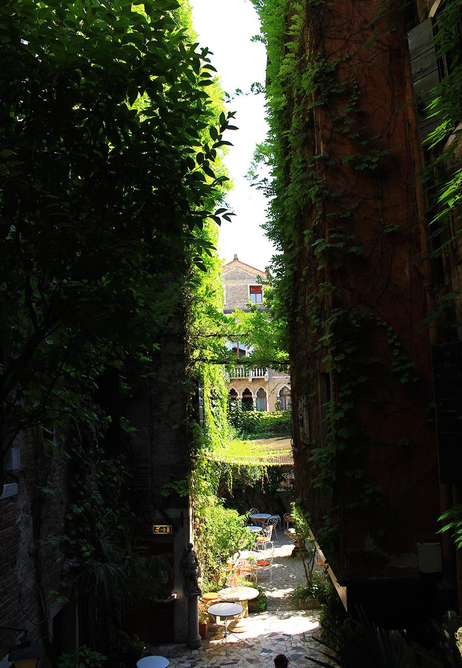 Galerie de photos site officiel de h tel flora for Meilleur site reservation hotel