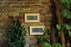 garden_hotelflora_venezia7